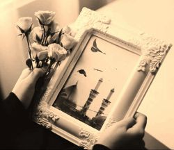 #امام_حسین علیهالسلام..... آنچنان جای گرفتی تو به چشم و دلِ من... که به خوبانِ دو عالم نظری نیست مرا...!