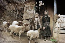 گیلان-شهرستان ماسال-تاس کوه-زمستان96-عکس : بهرام حاجی زاده