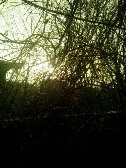 درآستان باران آفتاب آمد مژده آرد صبح را