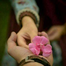 عشق لیاقت میخواهد  و عاشق شدن جرات.✅  همیشه در پی کسی باش که با تمام  کاستی ها و کمی ها و عیب هایت  حاضر باشد به تو عشق بورزد✅  و تو را به همه دنیا نشان بدهد..✅