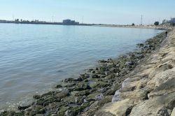 دریای بندرعباس امروز