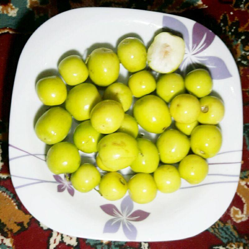 میوه خوشمزه کُنار یا همان میوه درخت قرآنی سِدر. الحمدلله تو بوشهر خیلی زیاده ولی تو شهرای اکثر شما بزرگواران فکر کنم اسمشم بزور شنیده باشید ؟!