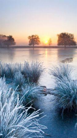سلام به دوستان عزیز و گرامی.  امروز اولین برف زمستان بر زمین نشست. خدایا شکرت... (∩_∩)از اینکه مدتی در لنزور نبودم عذرخواهی میکنم... ^_^||