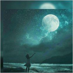 فانوس چیدهام مسیر غریبی که خط شب پر کرده از هجوم سیاهی و اضطراب  هر شب برای آمدنت نور میخرم هر شب به عشق آمدنت میروم به خواب... شبتون آرام خوش...