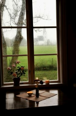 میخواهم هر صبح که پنجره را باز میکنی، آن درختِ روبهرو من باشم... فصل تازه من باشم، آفتاب من باشم، استکان چای من باشم... و هر پرندهای که نان از انگشتان تو میگیرد...
