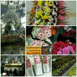 تصاویری از گل آرایی حرم حضرت زینب سلام الله علیها