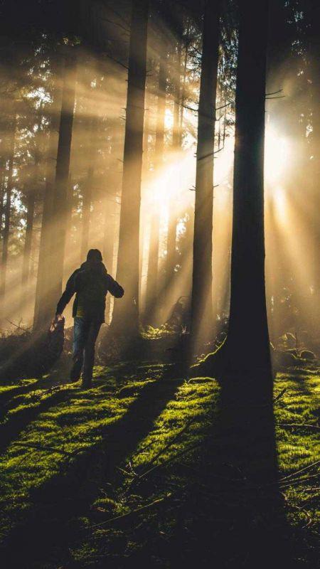 وقتی دلت  تَرَک برداشت،  دیگر آمدن یا رفتن،  بودن یا نبودن،  هیچ فرقی نمی کند.  آدم یک روز به جایی میرسد  که دلش میخواهد همَش بخوابد.  خواب چقدر خوب است  برای نداشتنها...