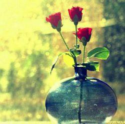 زندگی رسم خوشایندی است  زندگی بال و پری دارد با وسعت مرگ  پرشی دارد اندازه عشق  زندگی چیزی نیست که لب طاقچه عادت از یادمن و تو برود