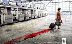 قاچاق حیوانات را متوقف كنید