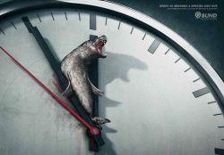 خطر انقراض بسیار نزدیك است