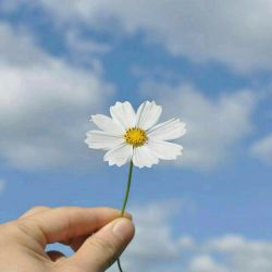 همه روز برای همه دوستانم،سلامتی،آرامش وعاقبت به خیری را آرزو دارم...  خدایا عطا کن به آنان هر آنچه برایشان خیر است... آمیــــــــــــــن