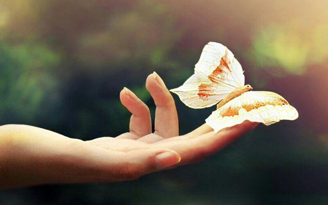 شادی نمادی از زیستن آگاهانه است و نمایشی از  سپاسگزاری در برابر یزدان پاک ما وارث این تفکریم  شاد باش و شاد زندگی کن که شاد زیستن انتخاب است نه اتفاق... www.amlakfadak.com