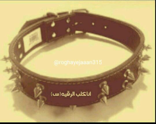 بزار هر چی میخوان بگن من #کلب_رقیه_ام