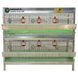 قفس 2 طبقه بلدرچین/ جنس: تمام گالوانیزه ضد زنگ / ظرفیت: ( 66) طول: 100 cm / عرض: 62 cm / ارتفاع:  95 cm