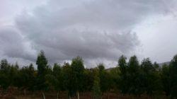 چندتا عکس از یه روز بارونی باعکاسی آرزو خانم;-)