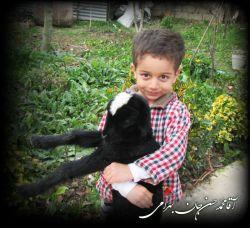 ببئی کوچولو در آغوش محمد حسن جان...