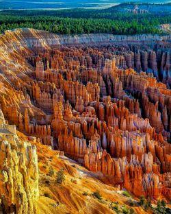 طبیعت شگفت انگیز پارک ملی برایس کنیون(Bryce Canyon National Park) پارکی طبیعی در ایالتیوتادرایالات متحده آمریکا