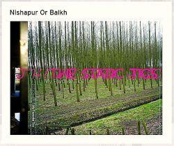 """خراسان غربی / آلبوم """"The Static Tics – My Favorite Tics"""" اثر موسیقیدانان هلندی: لوکاس سیمونیس (Lukas Simonis) و Henk Bakker (هِنک بِکر) که در زمینه موسیقی الکترونیک، آثار قابل توجهی را ارائه نمودهاند؛ این آلبوم، دارای ۱۹ قطعه موسیقی الکترونیک است که نام یکی از آنها """"Nishapur Or Balkh"""" (نیشابور یا بلخ) میباشد؛ این آلبوم در سال ۲۰۱۲ میلادی توسط KormDigitaal منتشر شده است."""