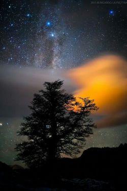 امشب...  از تمام شب ها آرام ترم⚘  نگران فردا نیستم⚘  همه چیز را به خدا سپرده ام❤  او بزرگ و مهربان است♥️    شبتون بخیر