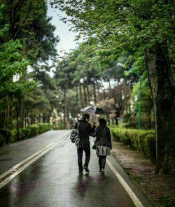 عصر که میشود دلت میخواهد  یک چتر باشد و باران ببارد  و تمام جهان را قدم بزنی  کنارکسی که  تمام حواست را  پرت خودش کرده