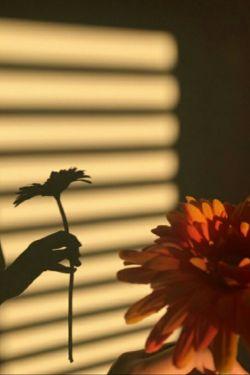بنام دوگل بهشت یكی عشق؛ دیگری سرنوشت ب قلم گفتم بنویس: هر چه دلش خواست نوشت، مارا خاك پای دوست و دوست را تاج سر ما نوشت  .. ای دوست آرزویم این است ك بهاری شود روز و شبت، ك ببارد ب تمام رخ تو بارش شادی و شعف ومن از دور ببینم ك پراز لبخند ست دنیا و چشم و دلت ...