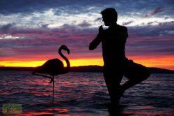 عکسهای شخصی و جادویی با مقوا  در نور غروب خورشید / اثر : جان مارشال(John Marshall)