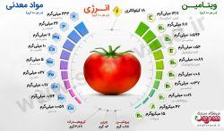 گوجه فرنگی از مهمترین محصولات ارزشمند دسته سبزیجات و صیفی   #اینفوگرافیک  @shahrvandeshop