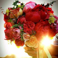 سلام دوست خوبم صبح روز یکشنبه تون بخیر و شادی،  تقدیم به شما بهترین دوست