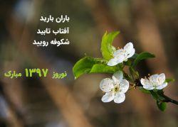 نوبهار است در آن کوش که خوشدل باشی  که بسی گل بدمد باز و تو در گل باشی