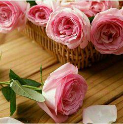 زندگی  با تبسم،شیرین با عشق،زیبا با محبت،محکم با صداقت،امن با یاد خدا،آرام میشود براتون زندگی شیرین،زیبا،محکم،امن،و آرام آرزو میکنم.