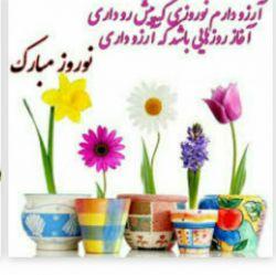 سلام دوستان سال نو همه مبارک انشااله سال خوبی باشه برای همه ایرانیا روزگارتون خوش