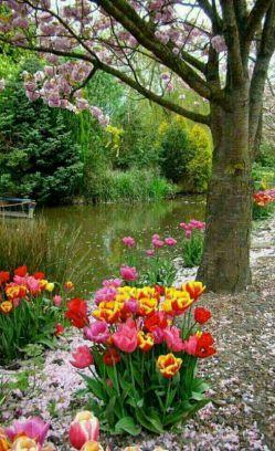 بهار شوق انگیز بر قامت سبز وجودتان شکوفه باران باد.. لبتان پر خنده، قلبتان از مهر آکنده، دولتتان پاینده ونوروزتان فرخنده باد**