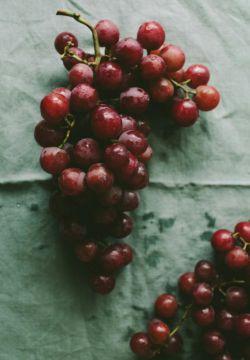 قرارمان فصل انگور / شراب که شدم / تو جام بیاور / من جان !