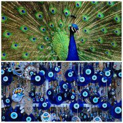 نماد چشم زخم که برای جلوگیری از چشم خوردن بکار میرود از پر طاووس گرفته شده  قدیمیها بر این باور بودند که این فرم در انتهای پرطاووس جلوی چشم خوردن طاووس را میگیرد و نماد خوشبختیست