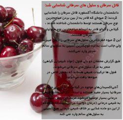 سلامتی و سرطان و میوه های گیلاس و گیلانار