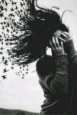 کوچ پرندگان به من آموخت وقتی هوای رابطه سرد است، باید رفت...