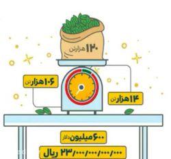 سالانه ۱۲۰ هزار تن چای در ایران مصرف میشود. فقط ۱۴ هزار تن تولید داخلی و ۱۰۶ هزار تن وارد میشود. ۶۰۰ میلیون دلار (۲۳۰۰ میلیارد تومان) برای واردات #چای_خارجی بی کیفیت میدیم. #چای_ایرانی_بخریم
