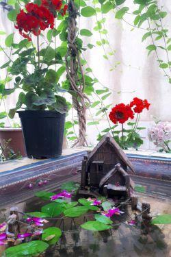 #باغچه خونه