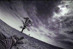 تو را که درد نباشد ز درد ما چه تفاوت/ تو حال تشنه ندانی که بر کنارهٔ جویی #سعدی