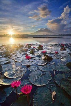 """""""زمان"""" به خاطر هیچ کس  منتظر نمی ماند! پس فراموش نکنید: """"دیروز"""" به تاریخ پیوست """" فردا """" معما است و """"امروز"""" هدیه است !صبحتان به نیکی"""