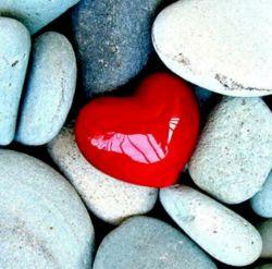 حتی دربین سنگ ها عشق ابدی است