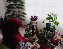 پیشنهاد مطالعه... دختر شینا (انتشارات سوره مهر)