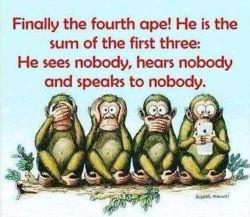 بالاخره میمون چهارمى هم پیدا شد كه جمع اون سه تاى اولیه :))  نه كسى رو میبینه، نه حرف كسى رو میشنوه نه با كسى حرف میزنه ☺☝️خجسته ایام ماه شعبان مبارک