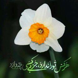 عیدمان مبارک