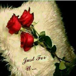 ای دل سرمست، کجا میپری؟ بزم تو کو؟ باده کجا میخوری؟   مایهٔ هر نقش و ترا نقش نی/ دایهٔ هر جان و تو از جان بری/   گفت:  چه دانم ببرش پیش عشق/ عشق بود نقد ترا مشتری/   چون به سر کوچهٔ عشق آمدیم/ دل بشد و من بشدم بر سری    #حضرت_مولانا