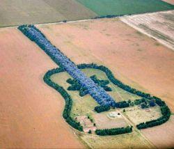 جنگلی به شکل گیتار دﺭ آرژانتین ! ... این جنگل را حدود 40 سال پیش یک کشاورز به یاد همسر مرحومش که به موسیقی علاقهﺯیادی داشته ساخته ﺍست !