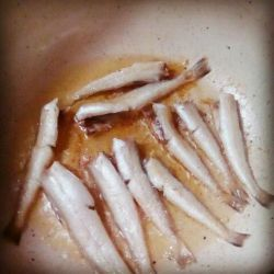 شوت ماهی خوشمزه ناهار امروز
