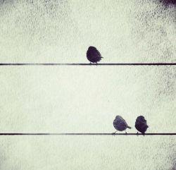هیچكس  نخواهد فهمید در #زندگى هر آدمى یك نفر هست كه #دوستداشتنى_ترین پنهان دنیاست...