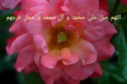 پیامبر اکرم (ص):  دو رکعت نماز در دل شب، از دنیا و آنچه در آن است نزد من محبوب تر است.  #بحارالانوار  @ahadiis