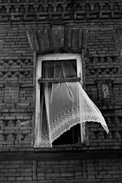 یک #پنجره برای دیدن یک #پنجره برای شنیدن یک #پنجره که مثل حلقه ی چاهی در انتهای خود به قلب زمین میرسد و باز میشود به سوی وسعت این مهربانی مکرر آبی رنگ یک #پنجره که دست های کوچک تنهایی را از بخشش شبانه ی عطر ستاره های کریم سرشار میکند و میشود از آنجا خورشید را به غربت گلهای شمعدانی مهمان کرد #فروغ_فرخزاد
